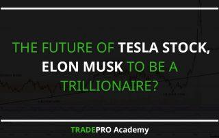 Tesla Stock Elon Musk