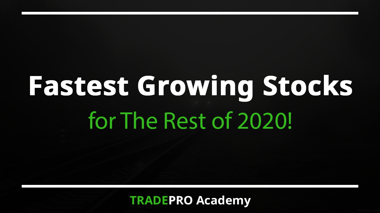 fastest growing stocks