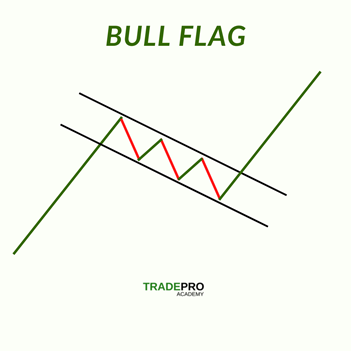 Bull Flag Laid Out