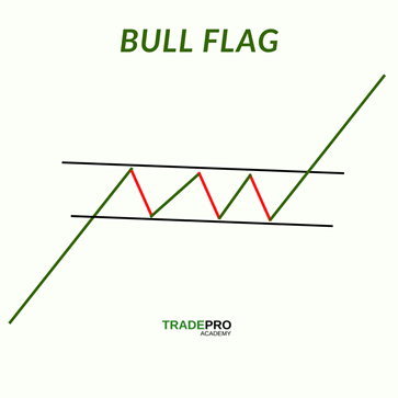 Bull Flag Laid Out Example