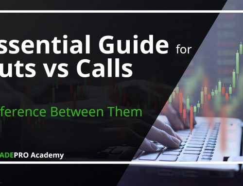 Essential Guide for Puts vs Calls & Difference Between Them